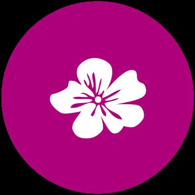 lavalera Naturdrogerie Chur Icon